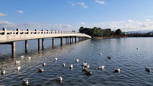 大濠公園・舞鶴公園・西公園・福岡市美術館の駐車場を紹介!