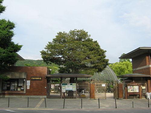 京都市動物園周辺(みやこめっせ・岡崎公園)の駐車場を紹介!