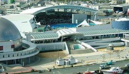 名古屋港水族館の駐車場&アクセス方法!料金や水族館の割引は?