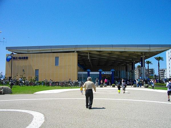 新江ノ島水族館のアクセス&周辺の駐車場!料金の安い駐車場は?