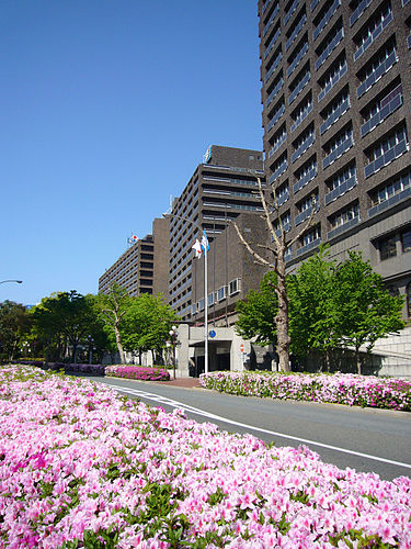 県庁前駅周辺の安い駐車場5選!兵庫県庁の駐車場の料金は無料?