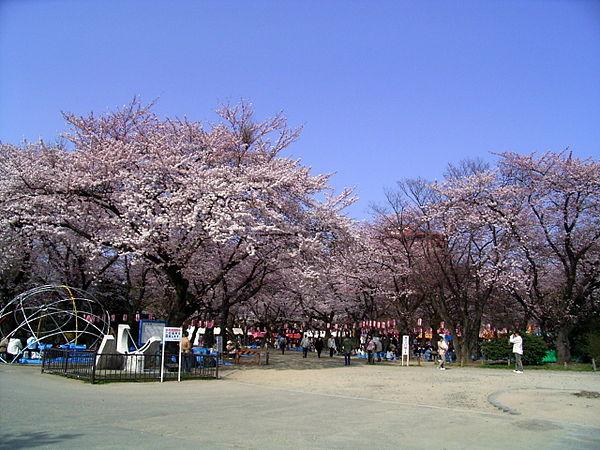 【仙台市】西公園周辺の駐車場!予約できる安いおすすめは?